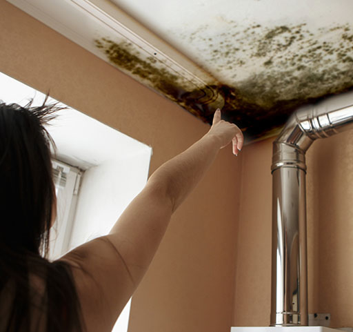 Mold Remediation Scottsdale